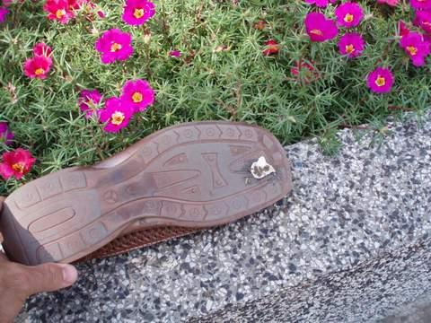 un chicle pegado a la suela del zapato